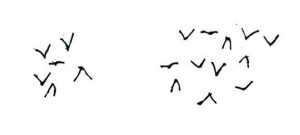 Gieren. In de Oudheid keek men vaak naar de vogels in de lucht om de toekomst of de wil van de goden te bepalen. Zo proberen Romulus en Remus te beslissen wie van hen koning van Rome wordt. Eerst ziet Romulus