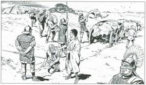 De Romeinen hieven belasting bij de Frisii in de vorm van koeienhuiden. (Tekening door Bert Bus)