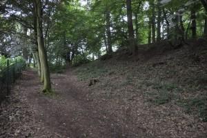 Bij het Belgische Thuin zijn de sporen nog zichtbaar van het oppidum (Gallisch fort) waar de Atuatuci zich in terugtrokken.