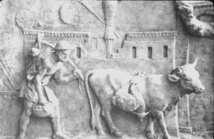 Cassius Vecellinus wilde met zijn wet de ontplooiing van de patriciërs enigszins beperken ten gunste van de plebejers. Dat kwam hem duur te staan.