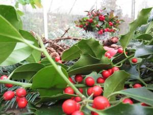 Voor kerstversiering gaat er niets boven planten die 's winters groen blijven zoals hulst, den en spar. Maar de taxus gaat nog terug op het Joelfeest.