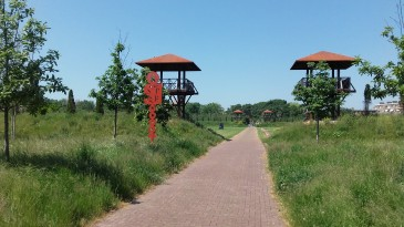Leiden Matilo2