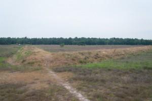 De greppel en wal van het dagmarskamp op de Ermelosche Heide zijn nog steeds zichtbaar. Bovendien worden ze nu zichtbaar gehouden.