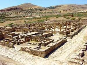 Marcus kwam helemaal uit Bulla Regia in Tunesië. Maar een boel soldaten kwamen ook van dichterbij.